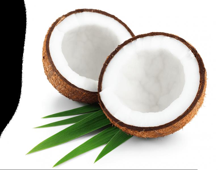 bff-coconut-768x597
